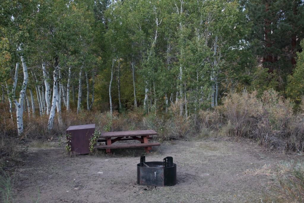 Campsite #30, Tuff Campground