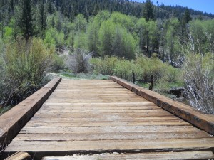 Bridge Across Buckeye Creek