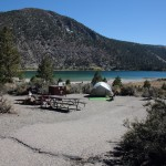 Campsites with Privacy - OH Ridgecolor