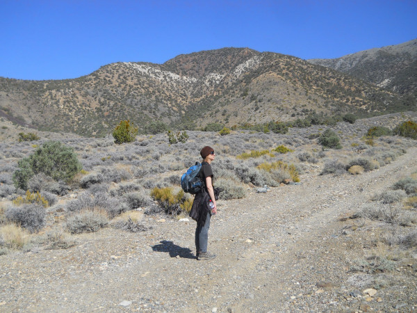 The author hiking the road to Hummingbird Spring Trail