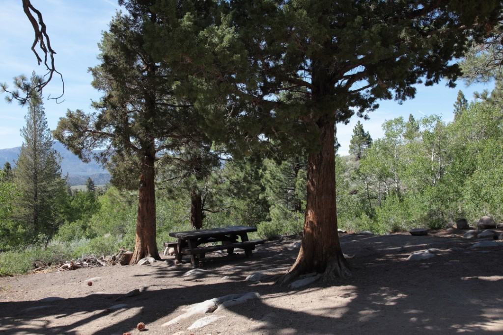 Campsite #1, Obsidian Campground