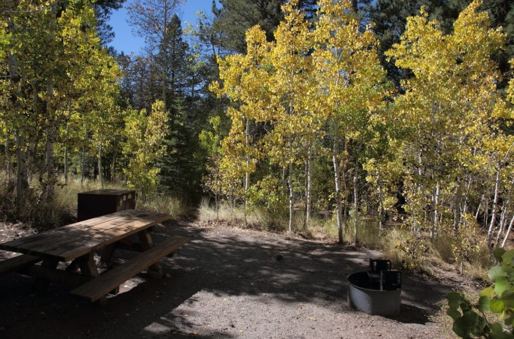 11 Best Campgrounds To View Fall Foliage in the Eastern Sierra