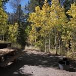 Reversed Creek Campground