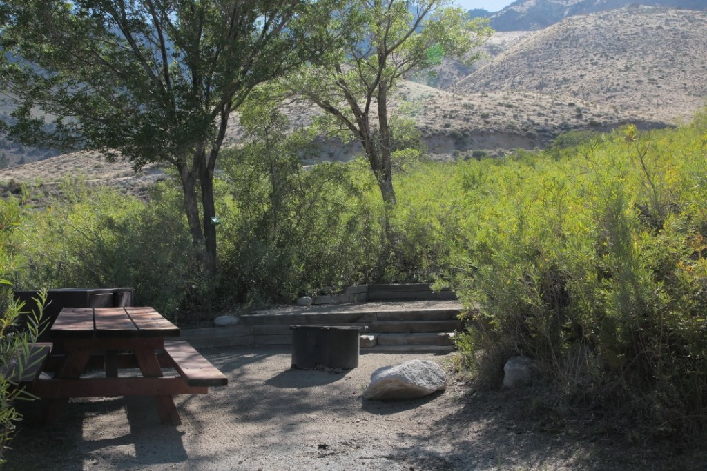 Gray's Meadow Campground