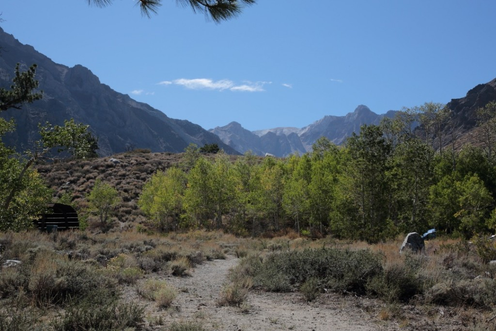View from McGee Creek Campground