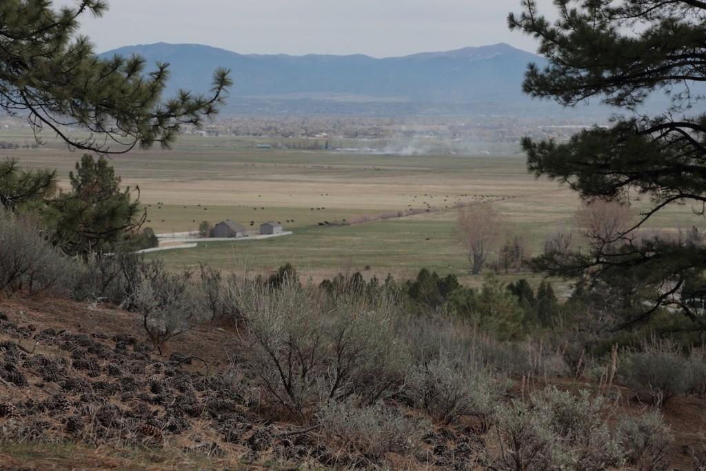 Job's Peak Ranch Trail