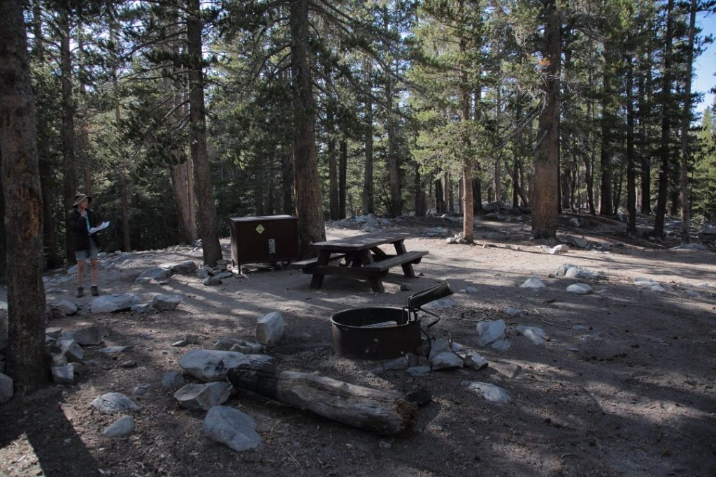 Coldwater Creek Campground #29