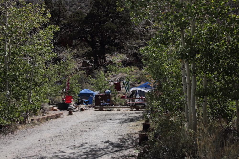 Iris Meadow Campground