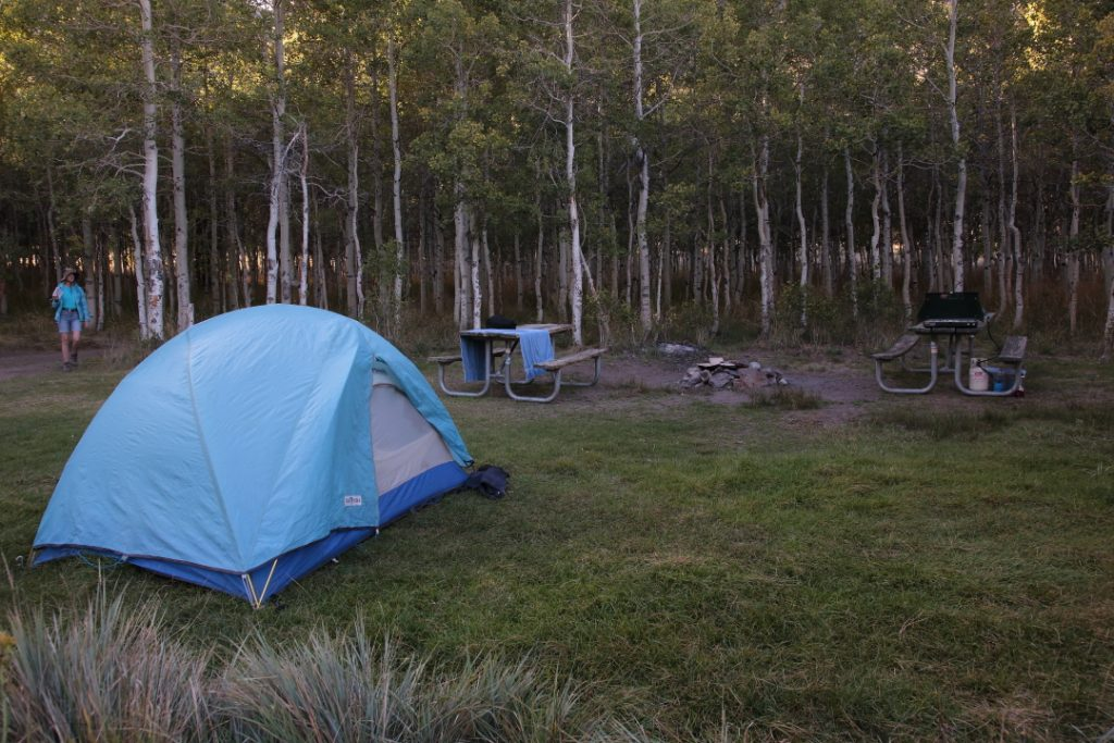 Lundy Campground Site 25